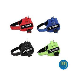 Custom-dog-harness-1